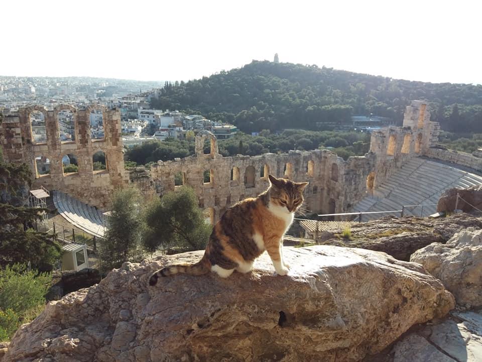 Travel the Greek Way