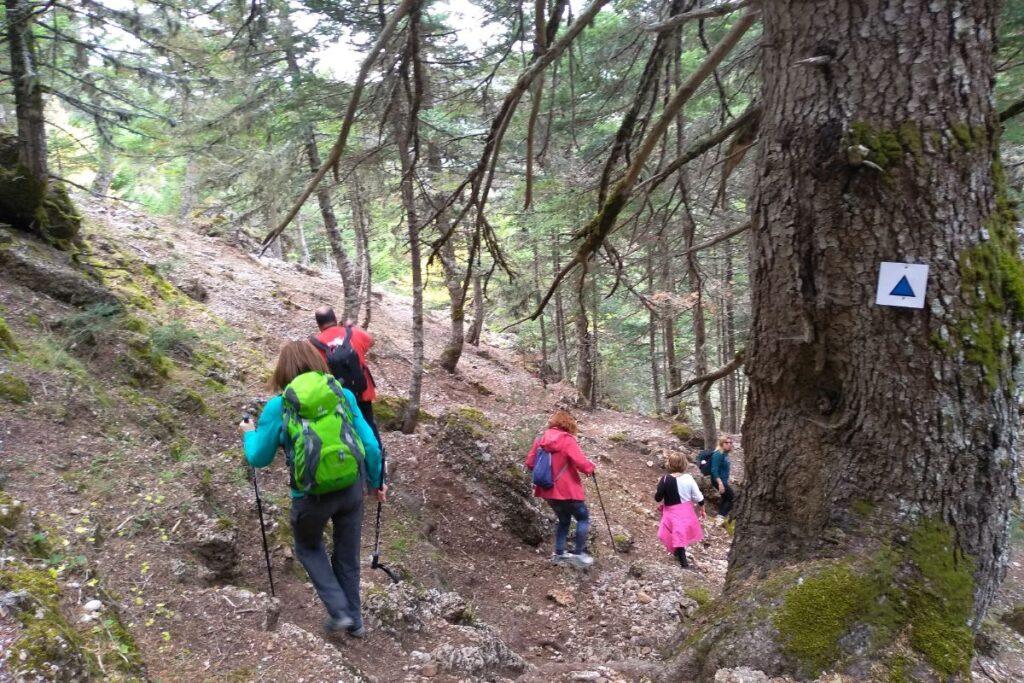 Kalavryta peloponnese hiking