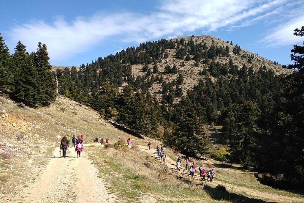 Kalavryta peloponnese Greece hiking downhill